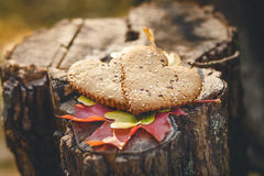Two Heart Form Cookies are on the Wooden Stumb with Autumnal Leaves.Nature Background.Selective Focus.Toned Royalty Free Stock Image