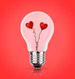 Two heart in light bulb Stock Image