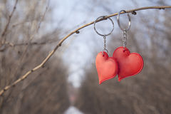 Two heart pendants on metal chain