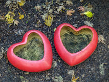 Two heart-shaped flowerpots Stock Photography