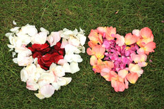 Two heart shapes from rose petals against grass background. Stock Photos