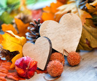 Two hearts in an autumn background royalty free stock photos