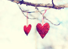 Two hearts. On the branch of a tree, retro look royalty free stock photography