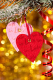 Two hearts on christmas fir tree branch Stock Photos