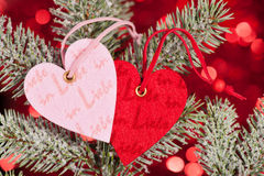 Two hearts on christmas fir tree branch Stock Images