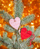 Two hearts on christmas fir tree Royalty Free Stock Photography