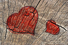 Two hearts on a cut tree. Two hearts drawn on a cut tree Royalty Free Stock Images