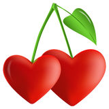 Two hearts in the form of berries on a branch Stock Images