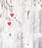 Two hearts, hanging on a branch Stock Image