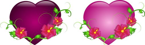 Two hearts with hibiscus in two colors Royalty Free Stock Images