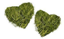 Two Hearts Made With Grass Royalty Free Stock Images