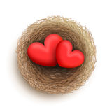 Two hearts in nest Royalty Free Stock Images