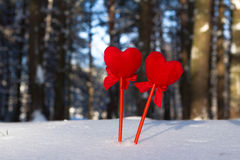 Two hearts . Royalty Free Stock Photo