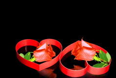 Two hearts, red roses. Stock Image