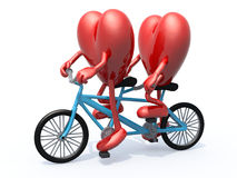 Two hearts riding tandem bicycle Stock Images