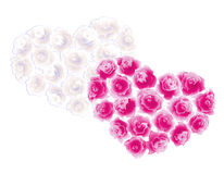 Two hearts of roses Royalty Free Stock Photos