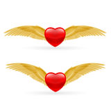 Two hearts with rwings Stock Photography