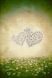 Two hearts spring meadow Stock Image