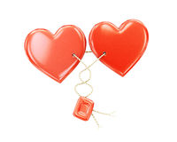 Two hearts together on a white background. Stock Photography