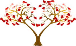 Two hearts trees Royalty Free Stock Photography