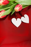 Two hearts and tulips Stock Images
