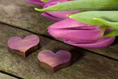 Two hearts and tulips Royalty Free Stock Image