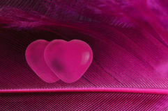 Two hearts Royalty Free Stock Photos