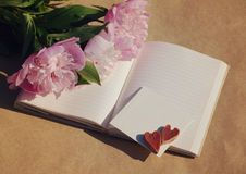 Two hearts on the white empty card for an inscription and a bouquet of a pink peonies Stock Image