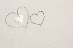Two hearts with white flowers on the beach surface background Stock Photo