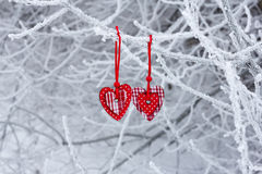 Two hearts in the winter Royalty Free Stock Images
