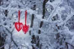 Two hearts in winter Royalty Free Stock Images
