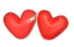 Two hearts zipped together Stock Photo