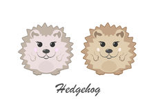 Two hedgehogs Royalty Free Stock Photography