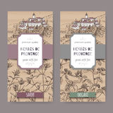 Two Herbes de Provence labels with town, savory and oregano. Two Herbes de Provence labels with Provence town landscape, savory and oregano sketch. Culinary Royalty Free Stock Photography