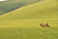 Two herdsmen on pasture Royalty Free Stock Images