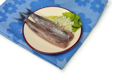 Two Herring fillets Stock Photography