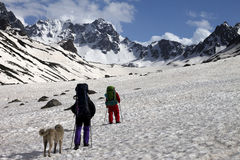 Two hikers with dog in spring snowy mountains Royalty Free Stock Photo