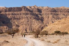 Two hikers in Negev desert mountains. Royalty Free Stock Photo