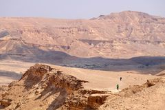 Two hikers in Negev desert. Royalty Free Stock Photos