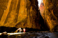 Two hikers in a sunbeam at Wall Street, in The Narrows hike at Zion National Park. Stock Image