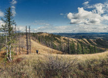 Two hikers on top of the ridge Royalty Free Stock Image