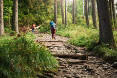Two hikers walking along a forest trail Stock Images