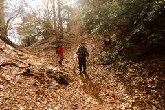 Two hikers walking down the mountains in autumn landscape. A couple of tourists descending the mountain stock photo