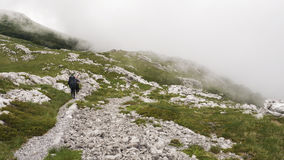 Two Hikers Walking on the Mountain Trail royalty free stock image
