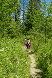 Two hikers walking in the mountains. Two hikers walking in the french mountains Royalty Free Stock Photos