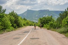 Two hiking people on the road Royalty Free Stock Photo