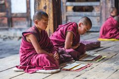 Two Himalayan Bhutanese young novice monks chanting , Bhutan. These two young Buddhist novice monks reading and chanting . boys would sitting on the ground of royalty free stock photos