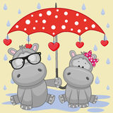 Two Hippos with umbrella Royalty Free Stock Image
