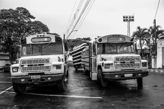 two old buses royalty free stock photography