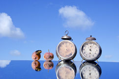 Two historical clocks and rotten apples Stock Photography